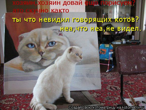 Котоматрица: , неа,что неа,не видел. ты что невидил говорящих котов? хозяин,хозяин довай ещо порисуем? ато скучно както