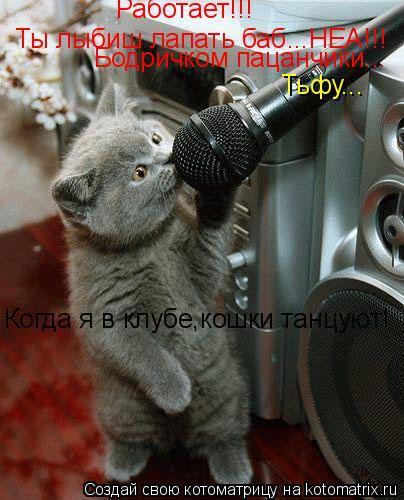 Котоматрица: Работает!!! Ты лыбиш лапать баб...НЕА!!! Бодричком пацанчики... Тьфу... Когда я в клубе,кошки танцуют!