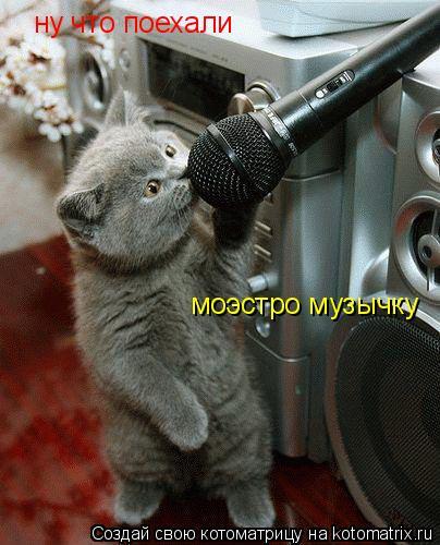 Котоматрица: ну что поехали  моэстро музычку