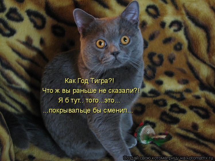 Котоматрица: Как Год Тигра?! Что ж вы раньше не сказали?! Я б тут.. того...это... ...покрывальце бы сменил...