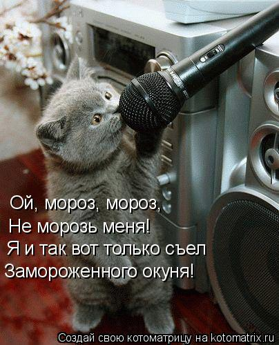 Котоматрица: Ой, мороз, мороз, Не морозь меня! Я и так вот только съел Замороженного окуня!