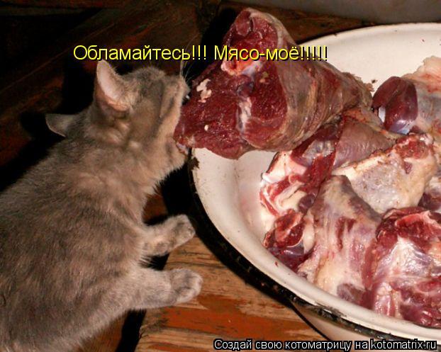 Котоматрица: Обламайтесь!!! Мясо-моё!!!!!