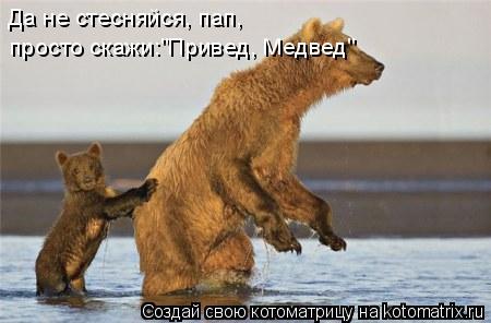 "Котоматрица: Да не стесняйся, пап, просто скажи:""Привед, Медвед"""