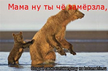 Котоматрица: Мама ну ты чё замёрзла Мама ну ты чё замёрзла,ща автобус пропустим! Мама ну ты чё замёрзла,ща автобус пропустим!