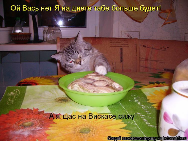 Котоматрица: Ой Вась нет Я на диете табе больше будет! А я щас на Вискасе сижу!