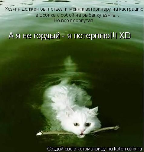 Котоматрица: Хозяин должен был отвезти меня к ветеринару на кастрацию,   а Бобика с собой на рыбалку взять... Но все перепутал... А я не гордый - я потерплю!!!