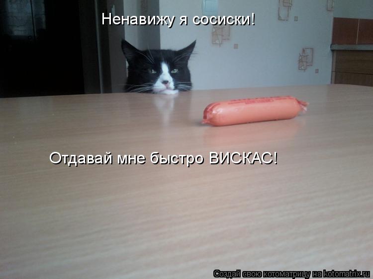 Котоматрица: Ненавижу я сосиски! Отдавай мне быстро ВИСКАС!