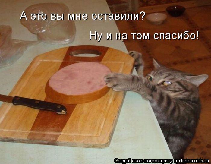 Котоматрица: А это вы мне оставили? Ну и на том спасибо!