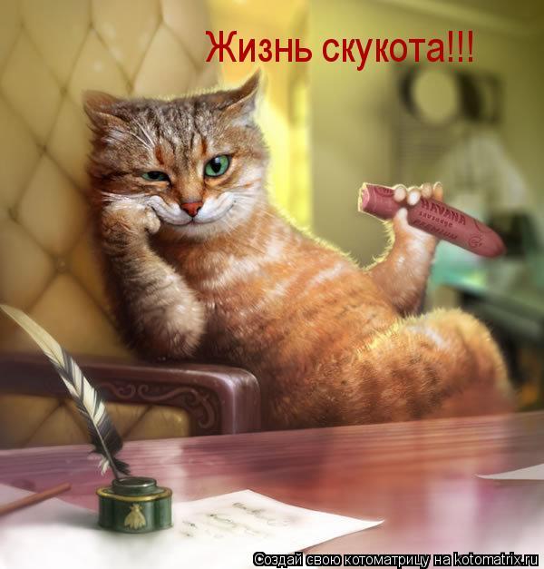 Котоматрица: Жизнь скукота!!!
