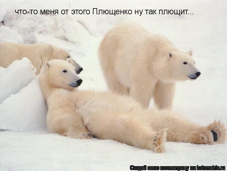 Котоматрица: что-то меня от этого Плющенко ну так плющит...