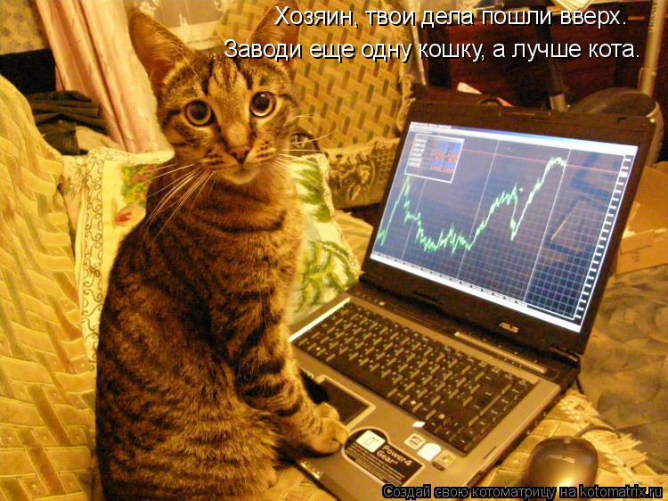 Котоматрица: Хозяин, твои дела пошли вверх. Заводи еще одну кошку, а лучше кота.