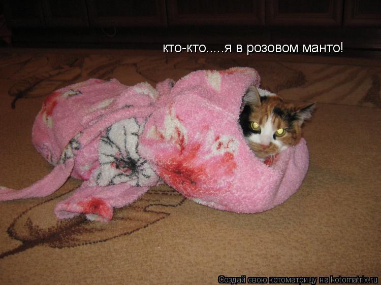 Котоматрица: кто-кто.....я в розовом манто!