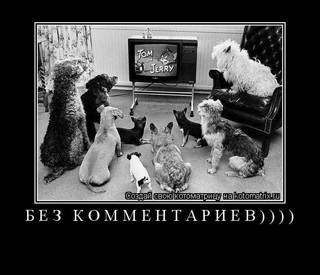 Котоматрица: БЕЗ КОММЕНТАРИЕВ))))