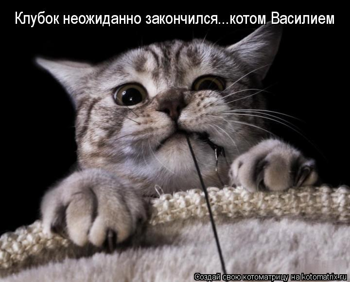 Котоматрица: Клубок неожиданно закончился...котом Василием