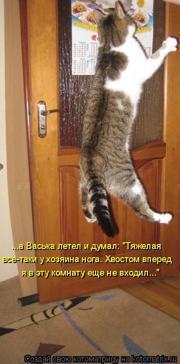 """Котоматрица: ...а Васька летел и думал: """"Тяжелая все-таки у хозяина нога. Хвостом вперед я в эту комнату еще не входил..."""""""