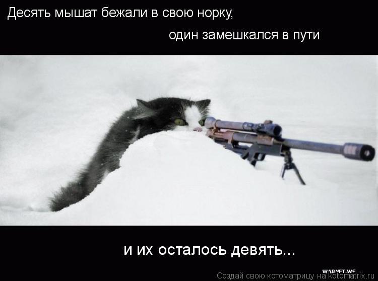 Котоматрица: Десять мышат бежали в свою норку, один замешкался в пути  и их осталось девять...