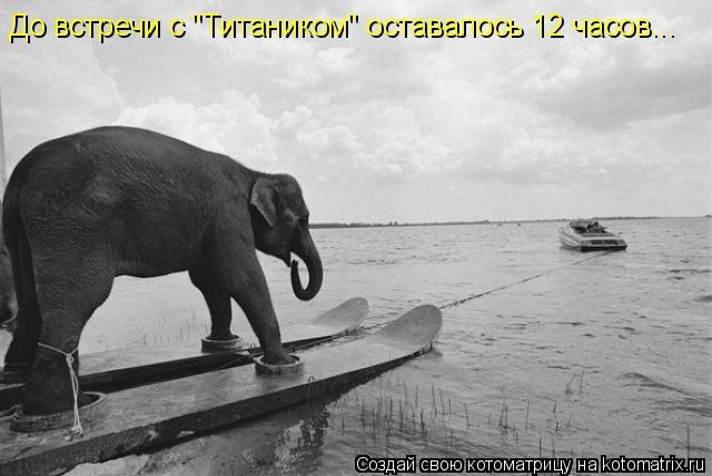 "Котоматрица: До встречи с ""Титаником"" оставалось 12 часов..."