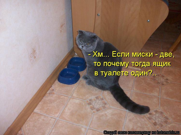 Котоматрица: - Хм... Если миски - две,  то почему тогда ящик в туалете один?..