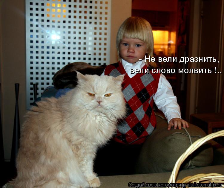 Котоматрица: - Не вели дразнить, вели слово молвить !..