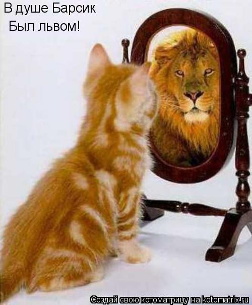 Котоматрица: В душе Барсик Был львом!