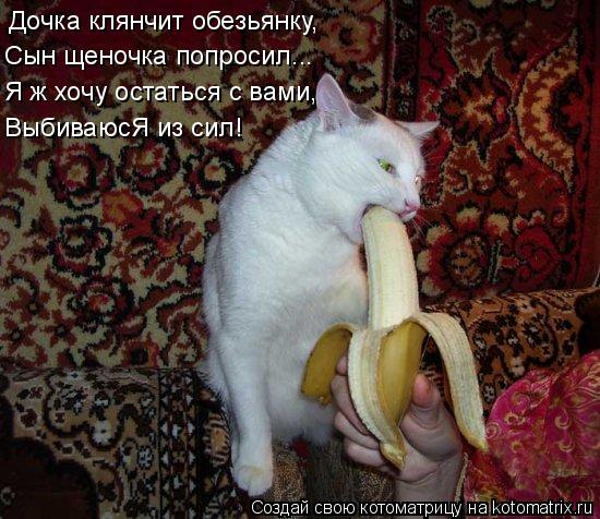Котоматрица: Дочка клянчит обезьянку, Сын щеночка попросил... Я ж хочу остаться с вами, ВыбиваюсЯ из сил!