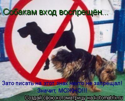 Котоматрица: Собакам вход воспрещён... Зато писать на этот знак никто не запрещал! Значит, МОЖНО!!!