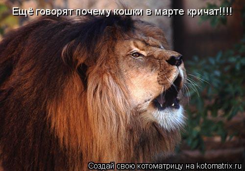 Котоматрица: Ещё говорят почему кошки в марте кричат!!!!