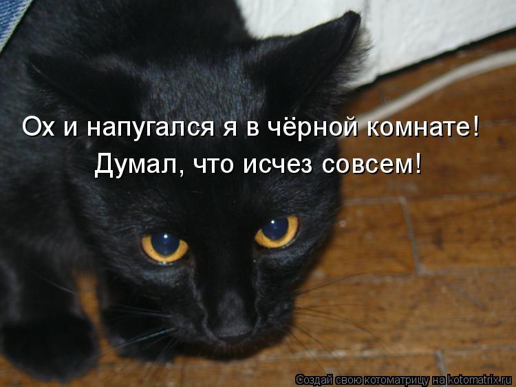 Котоматрица: Ох и напугался я в черной комнате! Думал, что исчез совсем! ..
