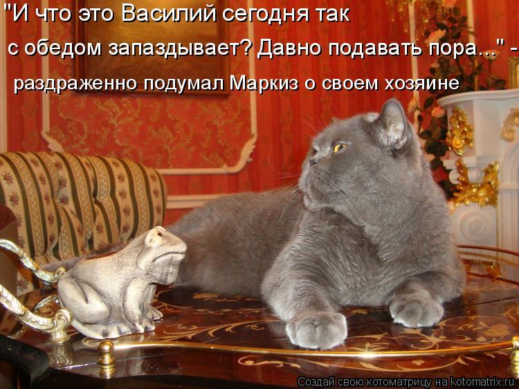 """Котоматрица: """"И что это Василий сегодня так с обедом запаздывает? Давно подавать пора..."""" - раздраженно подумал Маркиз о своем хозяине"""