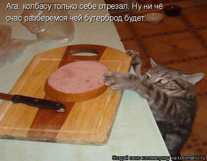 Котоматрица: Ага, колбасу только себе отрезал. Ну ни чё счас разберемся чей бутерброд будет...