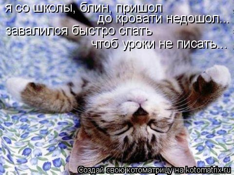 Котоматрица: я со школы, блин, пришол до кровати недошол... завалился быстро спать чтоб уроки не писать...