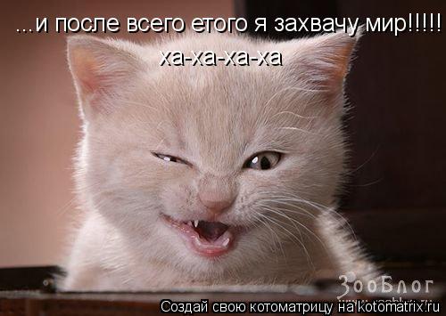 Котоматрица: ...и после всего етого я захвачу мир!!!!!  ха-ха-ха-ха