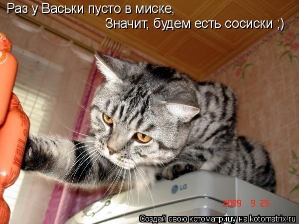 Котоматрица: Раз у Васьки пусто в миске, Значит, будем есть сосиски ;)