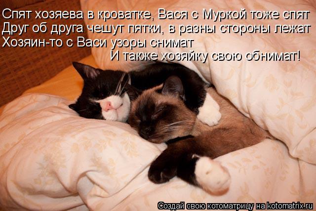 Котоматрица: Спят хозяева в кроватке, Вася с Муркой тоже спят Друг об друга чешут пятки, в разны стороны лежат Хозяин-то с Васи узоры снимат И также хозяй