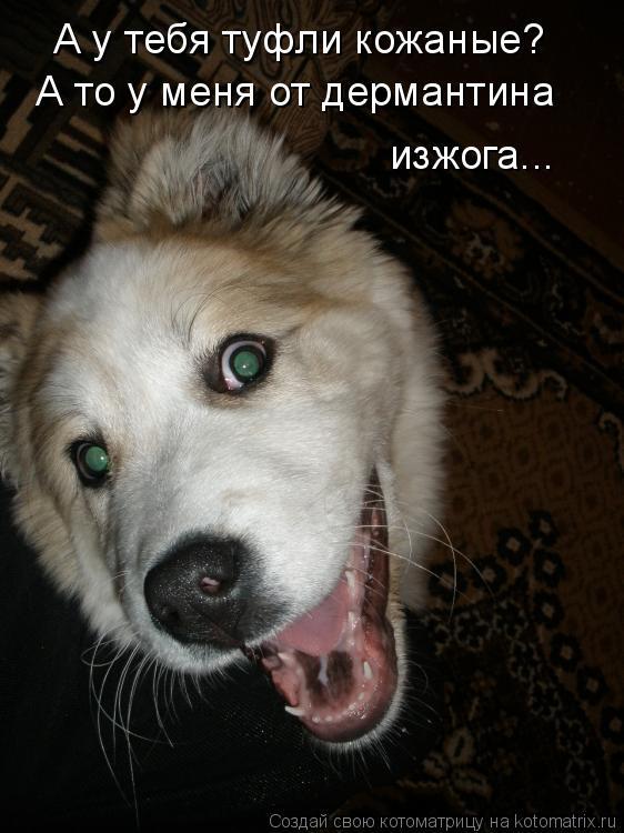 http://kotomatrix.ru/images/lolz/2010/01/18/462089.jpg