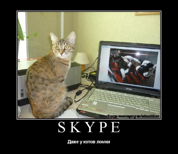 Котоматрица: Skype Даже у котов ломки