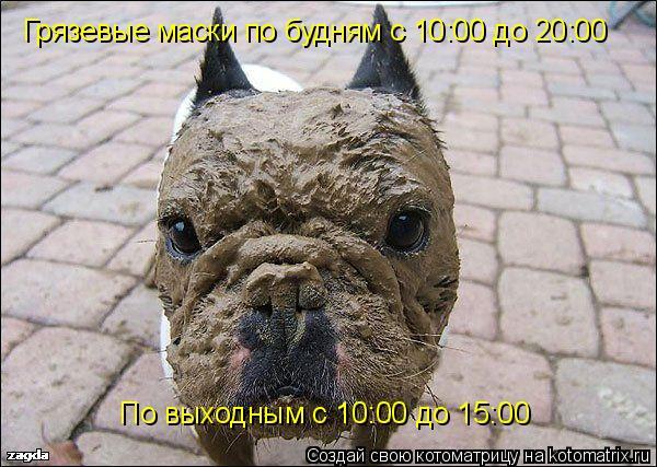 Котоматрица: Грязевые маски по будням с 10:00 до 20:00 По выходным с 10:00 до 15:00
