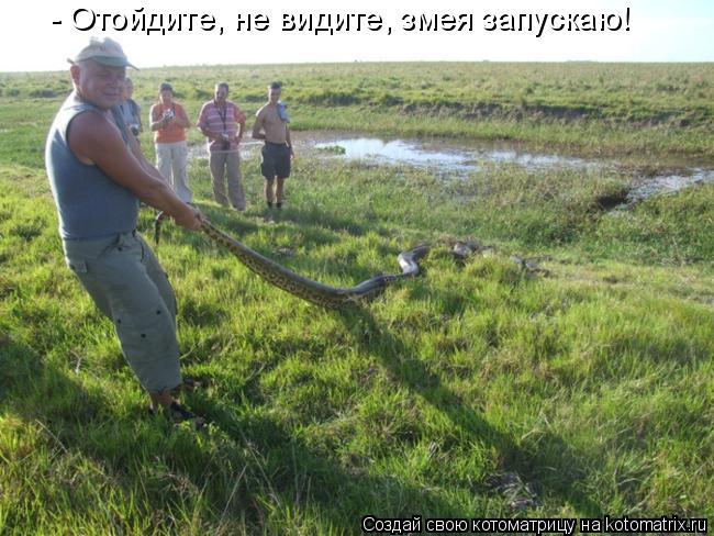 Котоматрица: - Отойдите, не видите, змея запускаю!