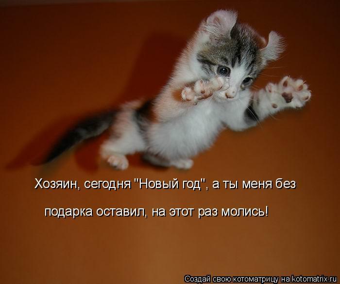 """Котоматрица: Хозяин, сегодня """"Новый год"""", а ты меня без  подарка оставил, на этот раз молись!"""