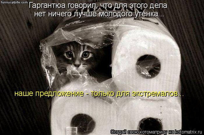 Котоматрица: Гаргантюа говорил, что для этого дела нет ничего лучше молодого утенка... наше предложение - только для экстремалов...