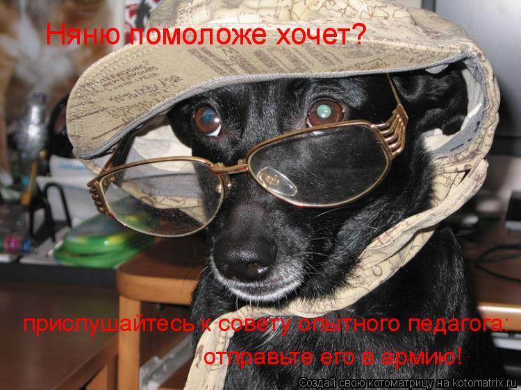 Котоматрица: Няню помоложе хочет? прислушайтесь к совету опытного педагога: отправьте его в армию!