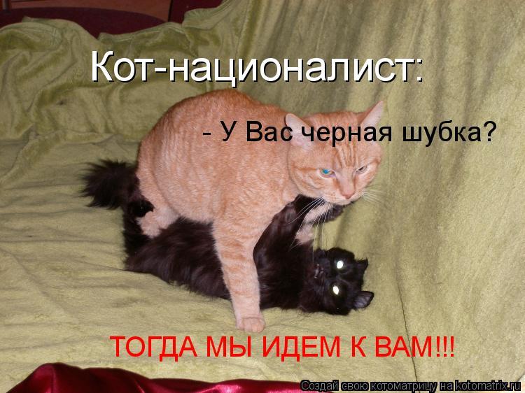 Котоматрица: Кот-националист:   - У Вас черная шубка? ТОГДА МЫ ИДЕМ К ВАМ!!!