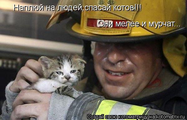 Котоматрица: Наплюй на людей,спасай котов!!! Они мелее и мурчат...