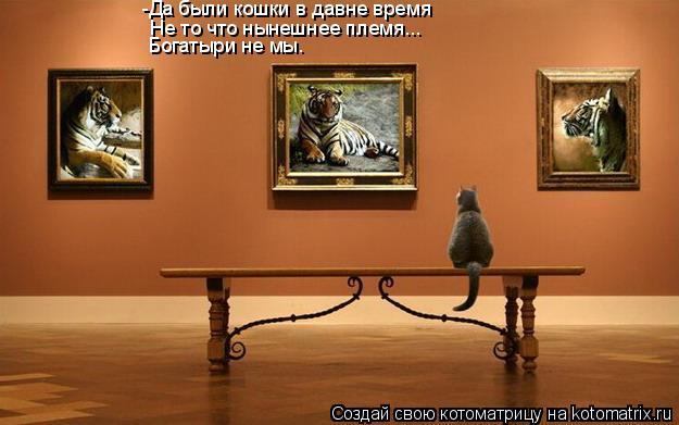 Котоматрица: -Да были кошки в давне время Не то что нынешнее племя... Богатыри не мы.