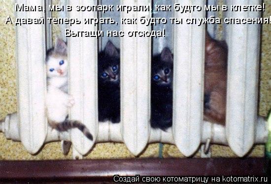 Котоматрица: Вытащи нас отсюда! Мама, мы в зоопарк играли, как будто мы в клетке! А давай теперь играть, как будто ты служба спасения!