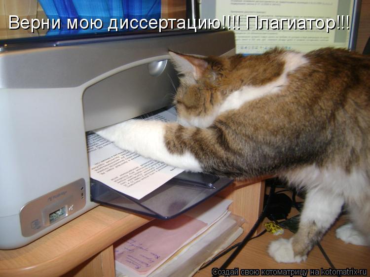 Котоматрица: Верни мою диссертацию!!!! Плагиатор!!!