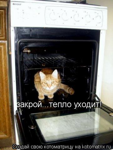 Котоматрица: закрой...тепло уходит!