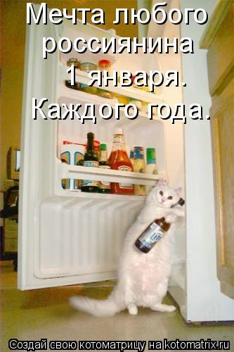 Котоматрица: Мечта любого  россиянина 1 января. Каждого года.