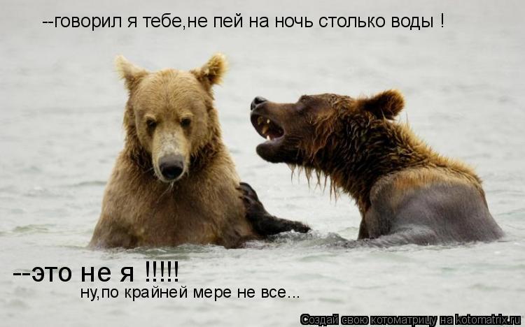 Котоматрица: --говорил я тебе,не пей на ночь столько воды ! --это не я !!!!! ну,по крайней мере не все...