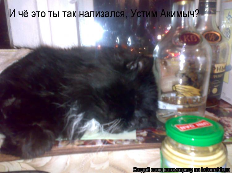 Котоматрица: И чё это ты так нализался, Устим Акимыч?